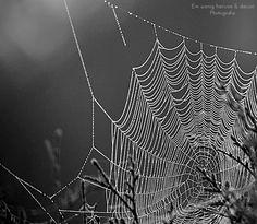 """I added """"Ein wenig hiervon & davon"""" to an #inlinkz linkup!http://einwenighiervonunddavon.blogspot.de/2014/09/spiders-home.html"""