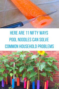 11 Creative Ways Pool Noodles Can Solve Common Household Problems - DIY Gartendekor Dollar speichert Pool Noodle Crafts, Crafts With Pool Noodles, Diy Hanging Shelves, Mason Jar Diy, Diy Garden Decor, Valentines Diy, Diy Wall, Dollar Stores, Decorating Tips