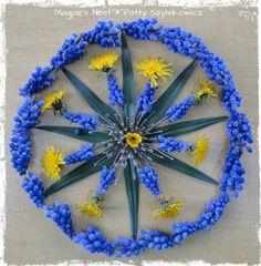 Muscari Mandala (2) and healing color!