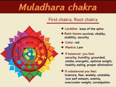 Chakra Locations, Muladhara Chakra, Low Self Esteem, Humility, Insecure, Anxiety, How Are You Feeling, Feelings, Chakras