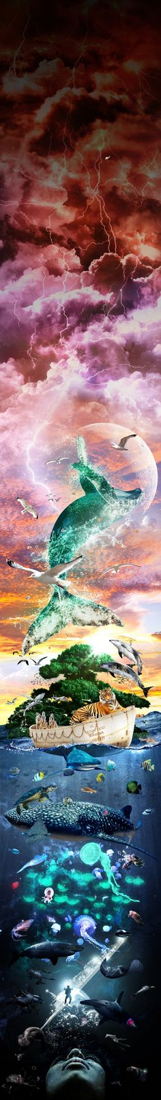 Life of Pi - Photo Manipulation by Kern Saunders Source Of Inspiration, Graphic Design Inspiration, Chakras, Film Big, Life Of Pi, Color Of Life, Great Pictures, Photo Manipulation, Tv