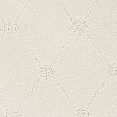 Dixie Group Columbia Valley Trusoft Beige Fashion Forward Carpet
