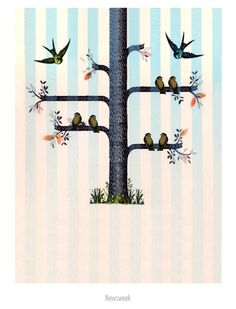 Birds on branches, illustration by Mark Allen Miller