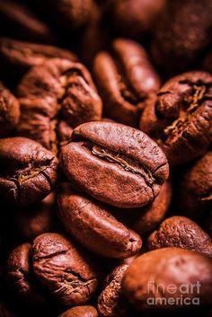 Closeup still life food macro photo on roasted dark brown coffee beans by Jorgo Photography - Wall Art Gallery