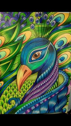 Birds to color