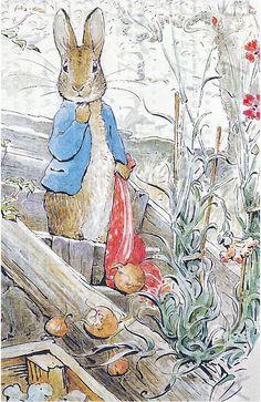 'The Tale of Benjamin Bunny' by Beatrix Potter Rabbit Illustration, Illustration Art, Beatrix Potter Nursery, Beatrix Potter Illustrations, Peter Rabbit And Friends, Peter Rabbit Books, Beatrice Potter, Rabbit Art, Drawings