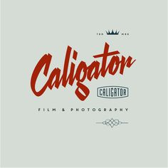 crowdSPRING | Caligator logo 2 by MWLogoist