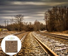 One of many great free stock photos from Pexels. This photo is about train tracks, transportation system, trees Muscle Building Diet, Build Muscle, Travel Advice, Travel Tips, Increase Muscle Mass, Bahn, Train Tracks, Elba, Taking Pictures