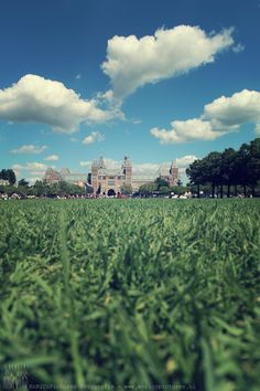 Stedelijk Museum gezien vanuit het gras