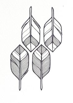 arrows illustration 'four' hand drawn feathers or by lightboxing