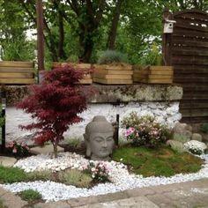 un jardin japonais avec un érable japonais et des galets blancs sur lesquels est posé une tête de Bouddha en pierre