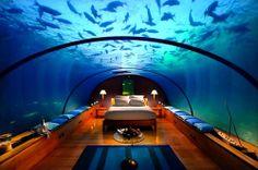 fish bedroom. we love it!