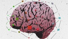 New Research: Students Benefit from Learning That Intelligence Is Not Fixed | MindShift