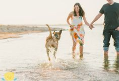 Engagement session with dog on the lake.