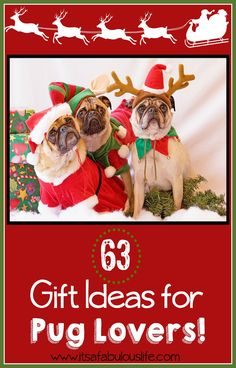Gifts for Pug Lovers - I love my dog. Lots of gift ideas for dog lovers!