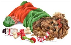 --Yorkshire Terrier - Stocking Stuffer
