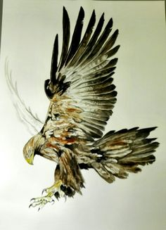 MNY tattoo. Aguila
