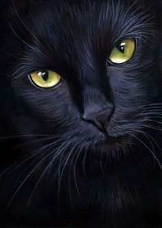 black cat portrait- pastel painting by art-it-art on DeviantArt – Ich - Animal Beautiful Cats, Animals Beautiful, Cute Animals, Gorgeous Eyes, Crazy Cat Lady, Crazy Cats, I Love Cats, Cool Cats, Black Cat Art