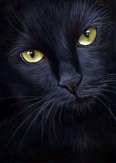 black cat portrait- pastel painting by art-it-art on DeviantArt – Ich - Animal I Love Cats, Crazy Cats, Cool Cats, Beautiful Cats, Animals Beautiful, Cute Animals, Gorgeous Eyes, Black Cat Art, Black Cats