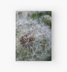 'Blowballs' Hardcover Journal by demonkourai Blank Page, Journal Design, Camera Nikon, Sell Your Art, Painting Inspiration, Romania, Dandelion, Finding Yourself, Budget