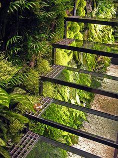 Patrick Veillet Studio, Paris, Vertical Garden by Patrick Blanc  www.verticalgardenpatrickblanc.com