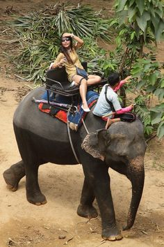 Elephant riding in Thialand.