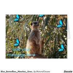 Blue_Butterflies,_Meerkat,_Greeting_Card. Greeting Card