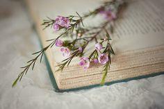 Spray of flowers on corner of book.