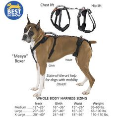 Full Body Dog Harness excellent for assisting degenerative myleopathy and aging arthritic boxers. Back section can be easily removed until additional support is needed. Very helpful in helping provide stability when climbing stairs and needing to squat. Dog Lover Gifts, Dog Lovers, Elderly Products, Dog Wheelchair, Boxer Rescue, Hip Lifts, Dog Steps, Animal Control, Search And Rescue