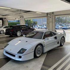 Pretty Cars, Cute Cars, My Dream Car, Dream Cars, Ferrari F40, Summer Dream, Jdm Cars, Vroom Vroom, Fast Cars