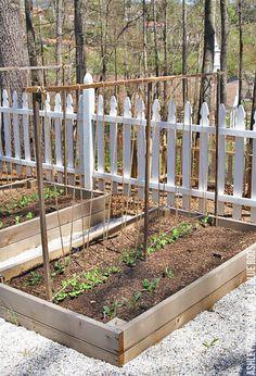 Garden Types, Veg Garden, Vegetable Garden Design, Edible Garden, Garden Plants, Bean Trellis, Tomato Trellis, Diy Trellis, Garden Trellis