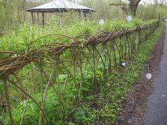 Willow fence   http://1.bp.blogspot.com