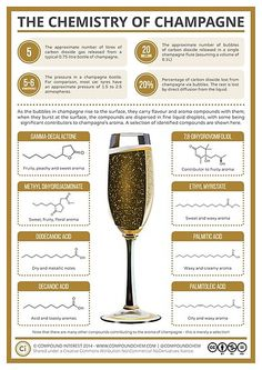 20 Million bubbles in a single champagne flute! The Chemistry of Champagne Science Chemistry, Food Science, Organic Chemistry, Chemistry Classroom, Chemistry Teacher, Physical Science, Earth Science, Science Experiments, Chateauneuf Du Pape