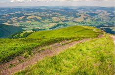 foot path down the grassy #hillside. location #mountain #Gymba, #TransCarpathia, Ukraine. tourists climbing hill in the distance. great #summer outdoor activities