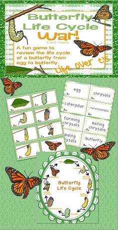 """A fun, """"Slap-Jack""""-style game for reviewing the frog life cycle through pictures, words and ordinal numbers. $ #science #frogs #education #lifecycle #1stgrade #lifeovercs"""