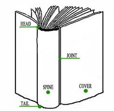 Book anatomy.jpg