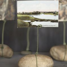 Rock wire picture holder.