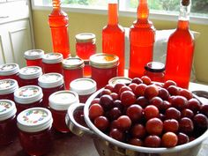 fruit preserve shrub syrup vinegar jam