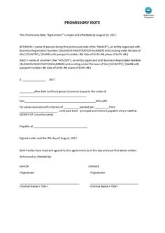Promissory Note Long Form  How To Write A Promissory Note Long