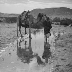 (animated stereo) Visiting Wady Gharandel, (circa 1920) by Thiophene_Guy, via Flickr
