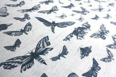 Entomologie Moths in Ink - printed linen from Tradescant and Son  tradescantandson.com