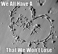 We All  Have A  That We Won't Lose  (courtesy of @Pinstamatic http://pinstamatic.com)