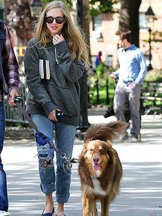 Tinseltown's top mutt Finn leads it walker Amanda Seyfried in the park.