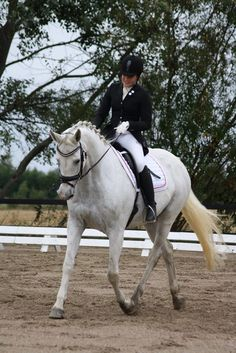 Caleeloo Horsenæs. This pic is from the first riding event for the horse