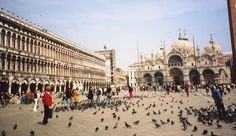 St. Mark's Square, Venice Italy...if the pigeon poop is wet then leave it...when it's dry it will flake off..from experience