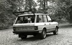 Range Rover Classic, the dog likes it :)