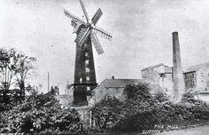 Windmills, Roots, History, Wind Mills, Historia, History Activities