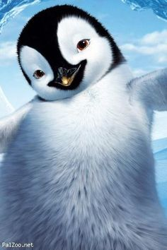 Animals Wallpaper: Baby Penguin Wallpaper Full HD for HD Wallpaper Baby Penguin Wallpapers Wallpapers) Penguin Images, Penguin Art, Penguin Animals, 2011 Movies, Good Movies, Awesome Movies, Soundtrack, Happy Feet Two, Funny Websites