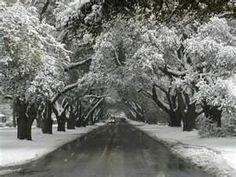 Winter road!