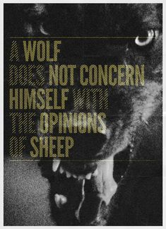 A wolf does not concern himself with the opinions of sheep